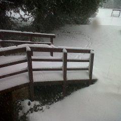 Winter 2 pic