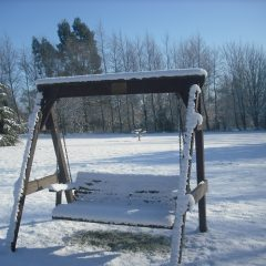 Winter on the swing